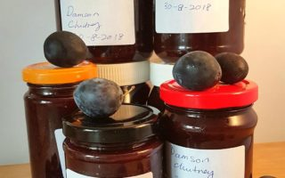 Jars of Damson chutney with damson fruits.